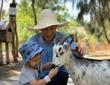 Khám phá FLC Zoo Safari Park – vườn thú bán hoang dã độc đáo tại Quy Nhơn