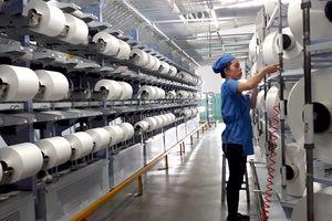 Cập nhật cổ phiếu STK: Lợi nhuận vượt kỳ vọng nhờ doanh số sợi tái chế tích cực