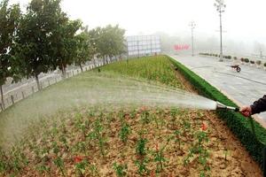 Gói thầu Chăm sóc cây xanh tại Nghệ An: Điều chỉnh 2 tiêu chí hạn chế cạnh tranh