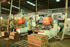 Cập nhật cổ phiếu PTB: Mảng gỗ tiếp tục ghi nhận KQKD mạnh mẽ