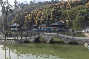Lào Cai: Xác minh thông tin tố cáo