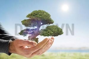 Nhận định thị trường phiên 19/11: Hạn chế mua đuổi và cân nhắc hạ tỷ trọng cổ phiếu