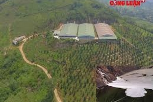 Đà Bắc (Hòa Bình): Người dân bức xúc vì Cty Phúc Hưng xả thải gây ô nhiễm