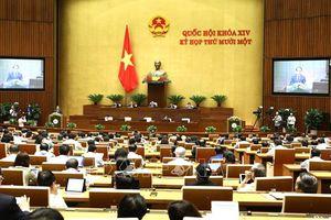 Thí điểm chức danh đại biểu chuyên trách của HĐND TP Hà Nội