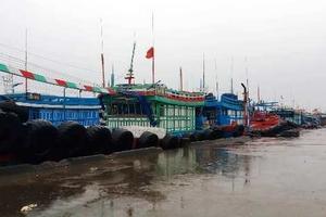 Bão số 4 đổ bộ gây thiệt hại không nhiều ở Thanh Hóa