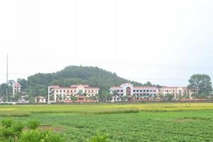 Huyện Tân Yên, tỉnh Bắc Giang: Bức tranh Kinh tế - Xã hội có nhiều khởi sắc