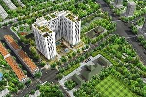 Cách người Nhật và người Việt giải quyết bài toán kiến trúc xanh ở đô thị