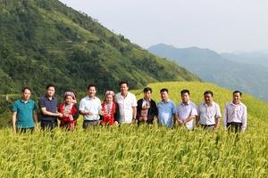 Bí thư Tỉnh ủy Hà Giang Đặng Quốc Khánh: Chè Shan tuyết là báu vật của địa phương