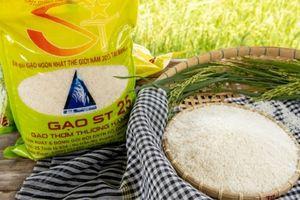 Gạo ST25 và câu chuyện bảo hộ thương hiệu Việt