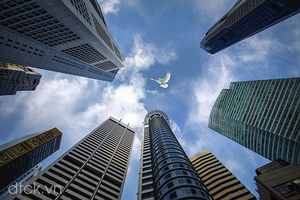 Nhận định thị trường phiên 30/11: Nắm giữ cổ phiếu cơ bản tốt