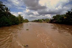 Sông Cửu Long mực nước đang lên cao nguy cơ ngập lụt có thể xảy ra trong vài ngày tới