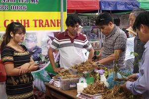 Phiên chợ sâm Ngọc Linh lần thứ 15 thu về hơn 4 tỷ đồng