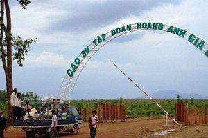 HNG phát hành 550 triệu cổ phiếu để hoán đổi nợ