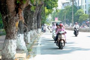 Thời tiết 29/11: Thủ đô Hà Nội ngày nắng, không mưa, sáng sớm và đêm trời rét
