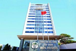 Hoàng Anh Gia Lai lỗ thêm 208 tỷ đồng sau kiểm toán