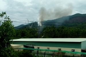Đại Lộc, Quảng Nam: Nhà máy sản xuất bột cá gây ô nhiễm