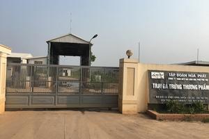 Huyện Cẩm Khê, Phú Thọ: Người dân kêu cứu vì chất thải chăn nuôi