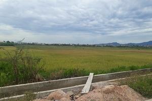 Quảng Bình giải thích việc chỉ định gói thầu xây nhà ở thương mại cho Tập đoàn Sơn Hải