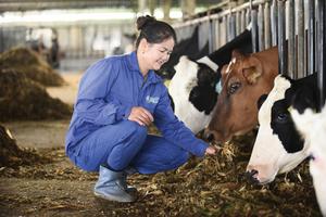 Mộc Châu Milk lên sàn giá 30.000 đồng/cp vào ngày 18/12