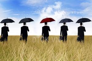 Nhận định thị trường phiên 6/12: Hạn chế mua đuổi đối với những mã đã tăng mạnh