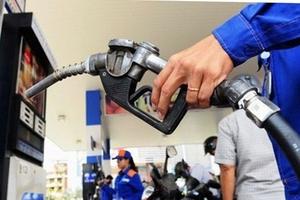 Giá xăng dầu hôm nay (14/9) vẫn diễn biến trái chiều, sản lượng OPEC tăng mạnh nhất 2 năm