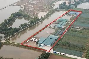 Đất nông nghiệp thành khu du lịch trải nghiệm: Huyện Thanh Trì chỉ đạo kiểm tra