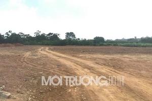 KDC Diamond Star (Quốc Oai): Phân lô bán nền đất trồng cây lâu năm?