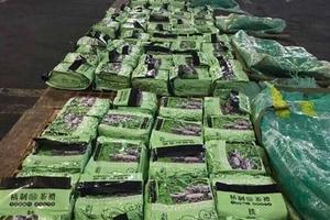 Phát hiện thêm 270 kg ma túy đá từ Việt Nam qua Philippines