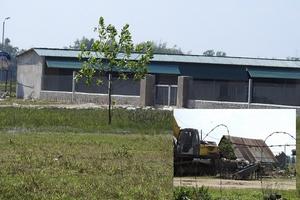 Trang trại chăn nuôi Công ty Cổ phần Tập đoàn Hoành Sơn, Hà Tĩnh: Chưa được giao đất, vẫn xây dựng?
