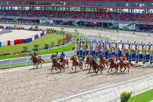Nhà đầu tư Hàn Quốc đổ 420 triệu USD vào dự án trường đua ngựa ở Sóc Sơn