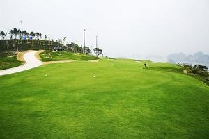 Cấm sử dụng đất dự án sân golf để xây nhà ở thương mại