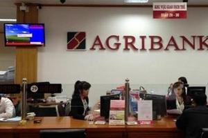 Agribank bán hàng loạt 'đất vàng' tại TP HCM để xử lý nợ xấu