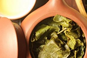 Những tác dụng tuyệt vời khi sử dụng trà Ô Long