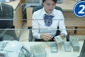 Ổn định tỷ giá USD/VND có vay, có trả