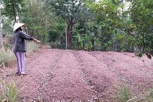 """Thừa Thiên Huế: Bồi thường đất giá """"bèo"""", dân bức xúc khiếu nại"""
