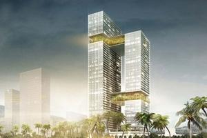 Hai dự án lớn, tổng mức đầu tư 168 triệu USD của Tập đoàn Hoa Sen bị dừng ở Bình Định