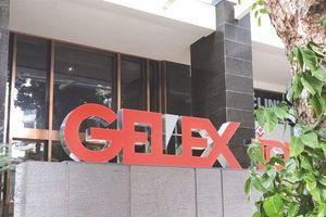 GEX dự kiến bán hơn 6 triệu cổ phiếu quỹ
