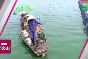 Hồ Tây giảm mùi hôi tanh nhờ công nghệ Nhật