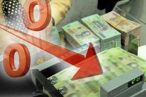 Lãi suất giảm sâu trên liên ngân hàng nhưng chưa lan tỏa được xuống thị trường 1