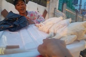 'Giải mã' gà không đầu siêu rẻ tại Việt Nam