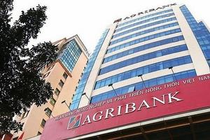 Tăng trưởng tín dụng của Agribank đạt 6,15% trong 7 tháng đầu năm