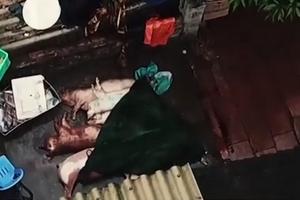 Bình luận 'Hô biến' lợn chết sấy khô thành món đặc sản thơm phức