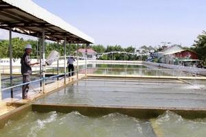 Đấu thầu lại Gói thầu EPC Nhà máy Nước Hòa Liên (Đà Nẵng): 5 nhà thầu nộp hồ sơ dự thầu