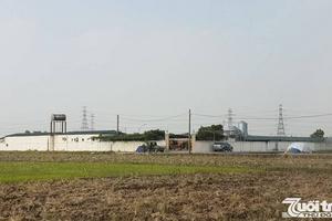 Ngang nhiên xây dựng trang trại giống gia cầm trên đất nông nghiệp