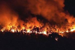 Làm rõ nguyên nhân, xử lý nghiêm tổ chức, cá nhân liên quan tới các vụ cháy rừng ở Hương Sơn