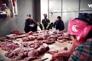 Tận thấy những kẻ vô lương 'hóa phép' lợn chết thành lợn gác bếp