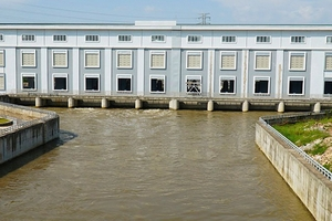 Dự án Trạm bơm tiêu Yên Nghĩa (Hà Nội): Nhiều gói tư vấn chỉ có 1 nhà thầu tham dự