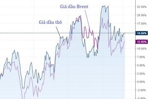 Chọn cổ phiếu dầu khí theo dự báo giá dầu, nhà đầu tư có 'đếm cua trong lỗ'?