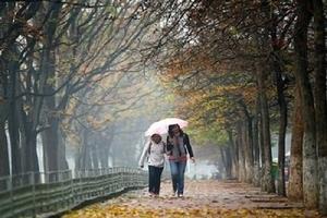 Dự báo thời tiết ngày 3/11: Bắc Bộ sắp đón không khí lạnh tăng cường