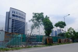 'Mải mê' với Phú Quốc và Vân Đồn, CEO Group bỏ quên 'đất vàng' Thủ đô